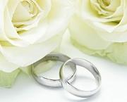aliancas-de-casamento-com-rosas-8